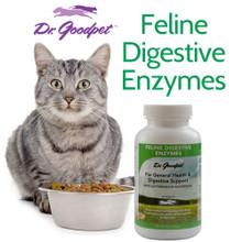 Feline Digestive Enzymes 4 oz