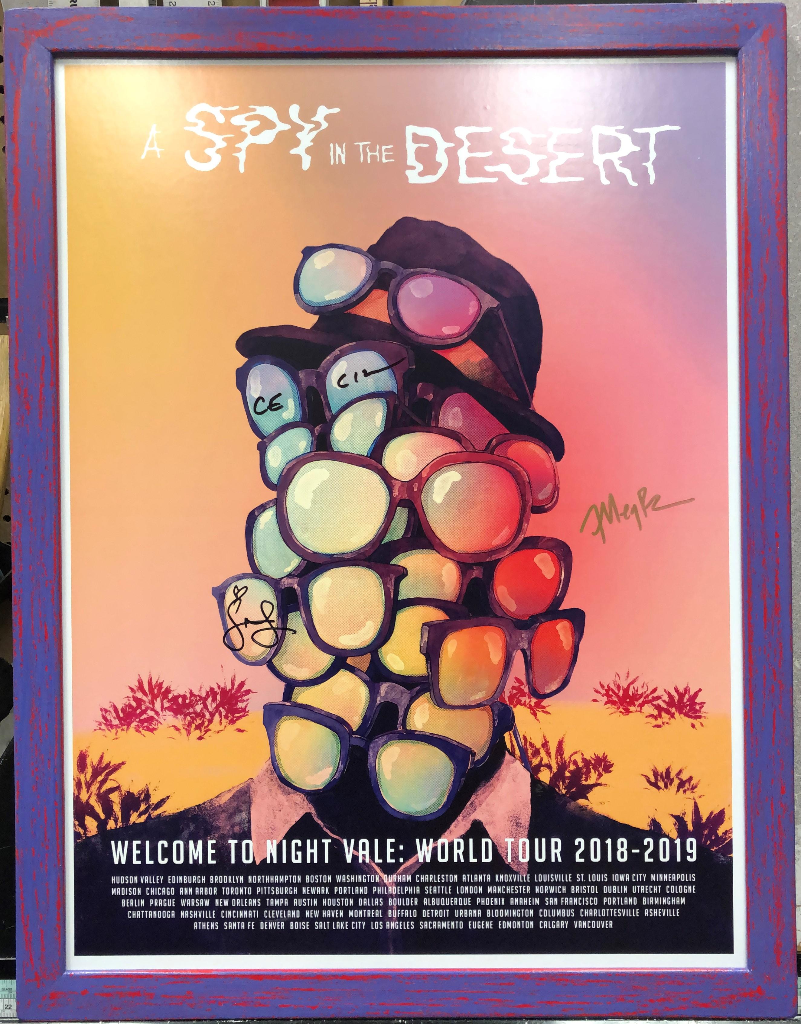 a-spy-in-the-desert.jpg