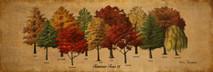 Wood Tennessee Trees II