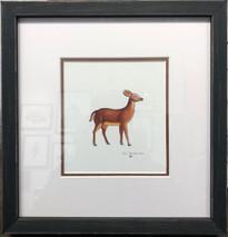 Deer - NEW