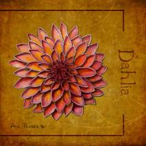 Wood Flower - Dahlia