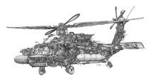 DS - Black Hawk (17x22)