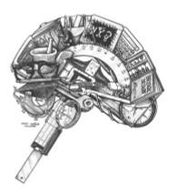 DS - Brain Left (8x10)