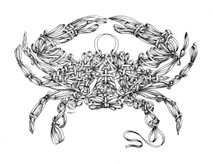 DS - Cancer - Ribbon Crab  (17x22)