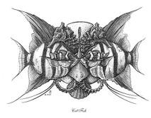 DS - Cat Fish (8x10)