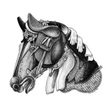 DS - Clothes Horse (16x20)