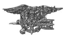DS - Navy Seals (16x20)