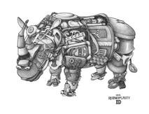 DS - Rhinoceros - Rhinoplasty (11x17)
