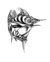 DS - Sail Fish (16x20)