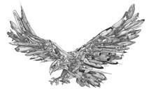 DS - Eagle-X(16x20)
