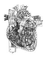 DS - Heart Cardiology