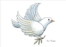 PP - Dove