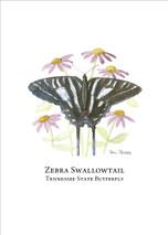 PP - Zebra Swallowtail