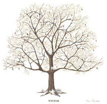 Tree - 4 Seasons - Winter