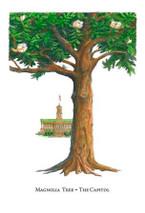 Tree Trunks - Capitol