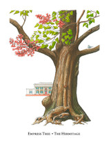 Tree Trunks - Hermitage