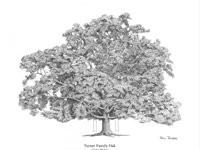 PP Turner Family Oak - Cane Ridge