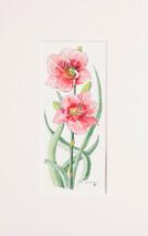 Spring Flowers 3 - 2012 (Original) unframed