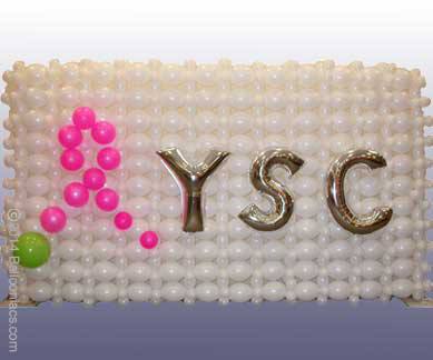 wall-ysc.jpg