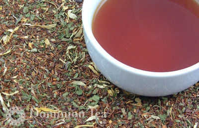 Chocolate Mint Tisane Dry Leaf and Liquor