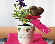 Unique Wedding Favors - Weddingstar Mini Flower Pots. Other to add the perfect finishing touch to your wedding.