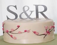 Wedding Cake Toppers - Weddingstar Brushed Silver Monogram Cake Topper Large