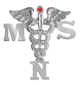 MSN Graduation Nursing Pin
