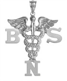 Nursing pins BSN Charm.  This nursing pin is the ultimate gift of jewelry Bachelor of Science in Nursing graduate.