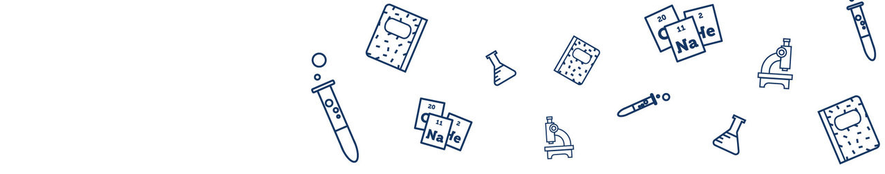Chemists in the Making: Fostering Inquiry with Science Notebooks - IL