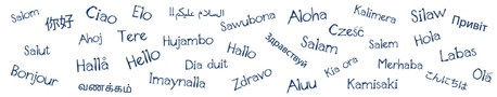 Integrating Native and Heritage Speakers in the Language Classroom - IL