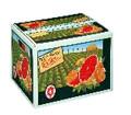 Navel Oranges Half Bushel
