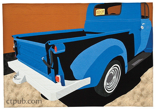 Picture This! Appliqué Pictorial Quilts–From Photo to Fabric by Marcia Stein