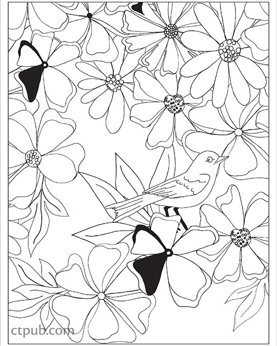 Boho Designs Coloring Book: 18 Fun Designs + See How Colors Play ...