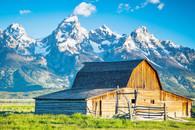 Mormon Row Barn in the Tetons - Premium Diamond Painting - Square - 55x70 - Free Shipping