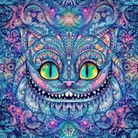 Smiling Cat - Premium Diamond Painting - Square - 50x50 - Free Shipping