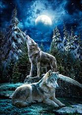 Wolves at Night - Premium Diamond Painting - Round - 50x60 - Free Shipping