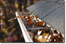 Full Service Gutter Cleaning, Inspection, Tune-Up for up to 100' of Gutter SINGLE VISIT