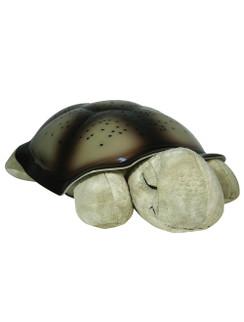 Twilight Turtle - Original