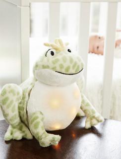 Twinkling Firefly Frog