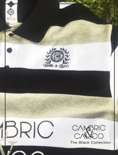 Monochromatic Collared Polo Shirt By Cambric and Calico
