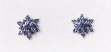 Montana Yogo Sapphire Snowflake Flower Earrings 14K White Gold