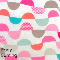 Party Bunting  - Printed Felt