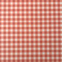 Summer Picnic - red check felt print