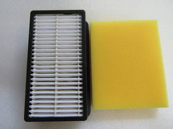Genuine Bissell Filter Pack #1008: 2032662 2032663 2410, 3918, 9595, 4207