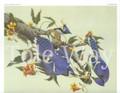 Blue Jays (8x10)