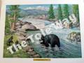 Black Bear with Cubs (12x16)