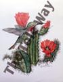 Hummingbird on Flowering Cactus (11x14)