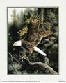 Eagle 2 (8x10)