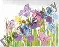 Iris Fairy (8x10)
