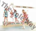 Basketball Game (8x10)